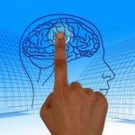 La mente no diferencia entre imaginación y realidad